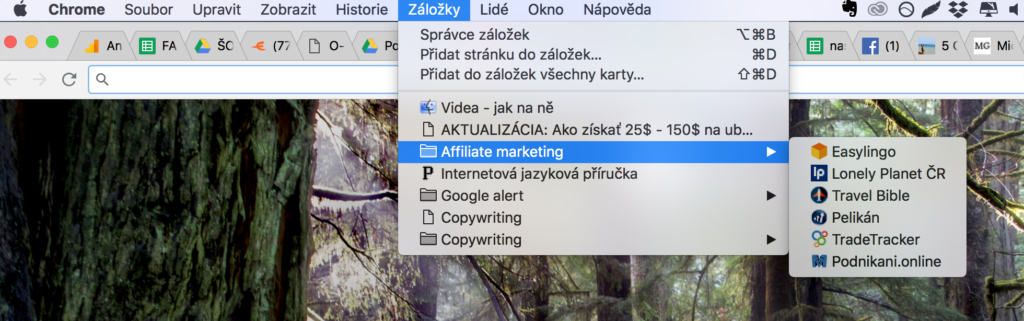Jak na affiliate marketing krok za krokem - záložky affil účtů